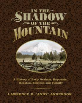 In the Shadow of the Mountain book cover